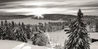 Aspen Snow LlR